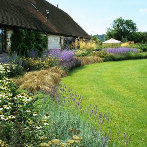 Acres Wild Views and Vistas Planting Bed