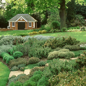 Acres Wild Cool and Composed Large Rockery Planting