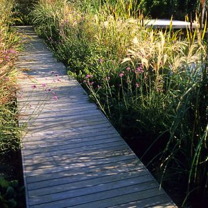 Acres Wild Country Contemporary Decking through Planting