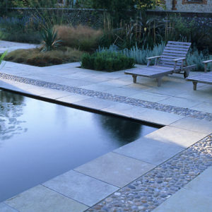Acres Wild Country Contemporary Pond Edge with Grasses