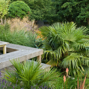 Acres Wild Form and Foliage Sloped Planting