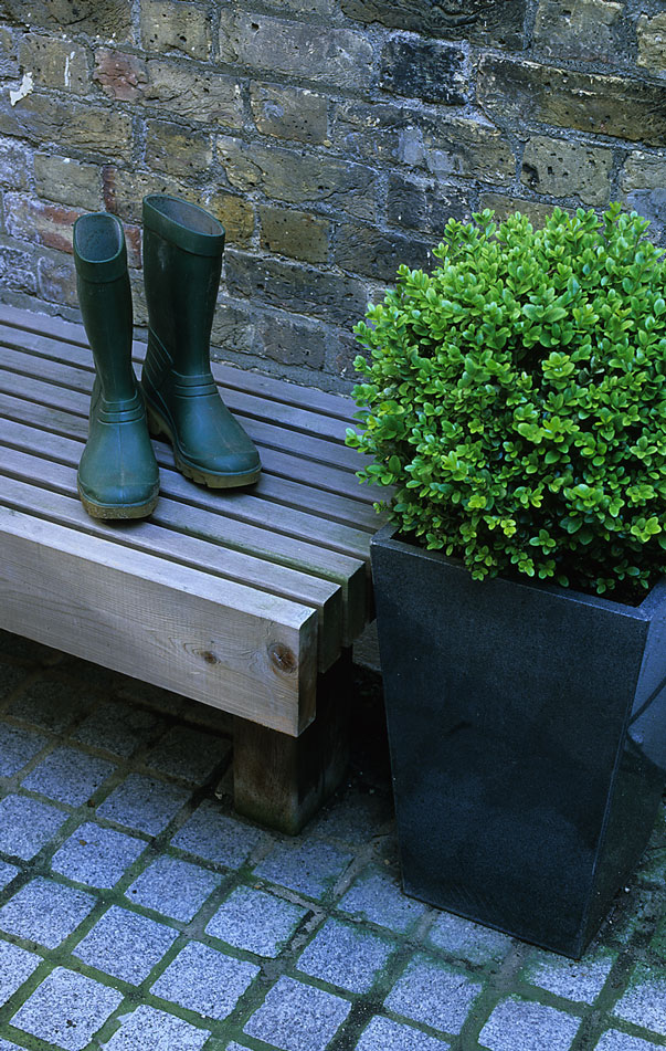 Acres Wild Grey and Green Buxus Ball