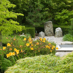 Acres Wild Japanese Jewel Planting