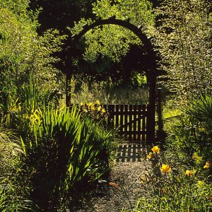 Acres Wild Lush and Luxuriant Gate