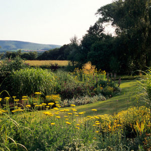 Acres Wild Meandering Meadow Garden View