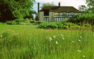 Acres Wild Meandering Meadow House