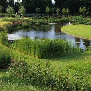Acres Wild Views and Vistas Curved Pond