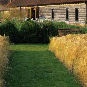 Acres Wild Views and Vistas Grass Planting