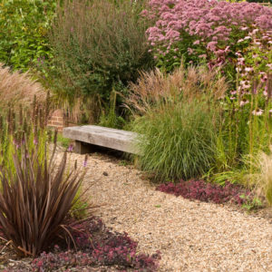 Acres Wild Willows and Water Perennials