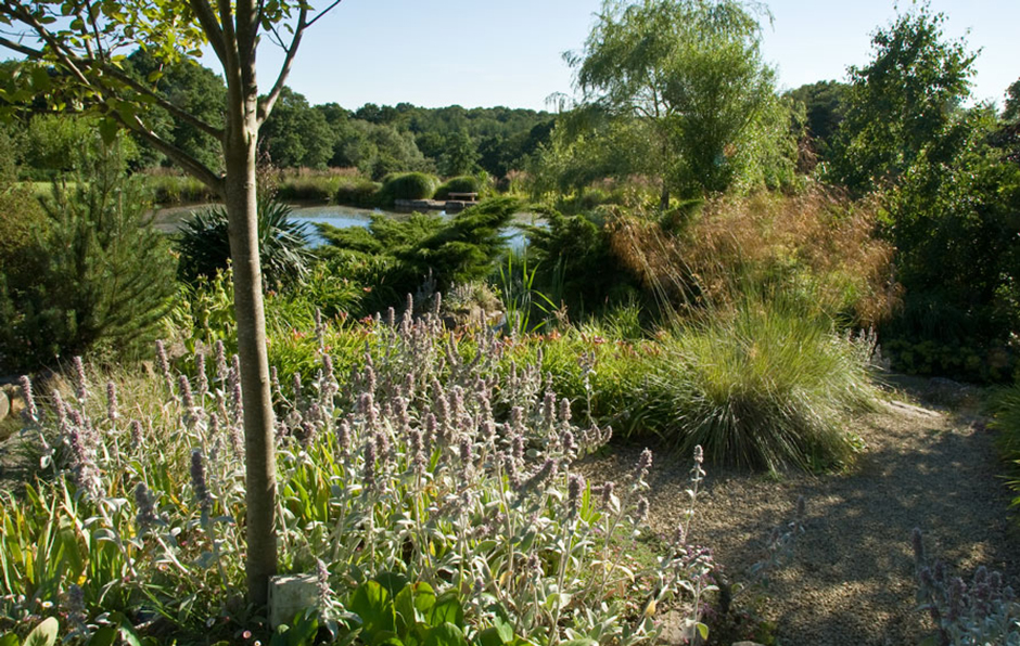 Acres Wild Ways with Water Perennial Planting