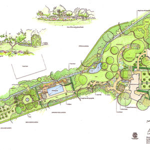 Poolside Planting Plan