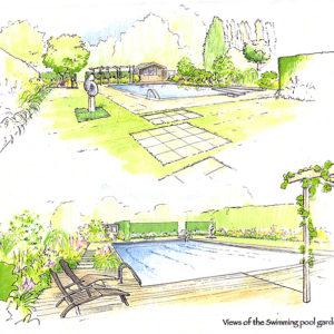 Poolside Planting Sketch