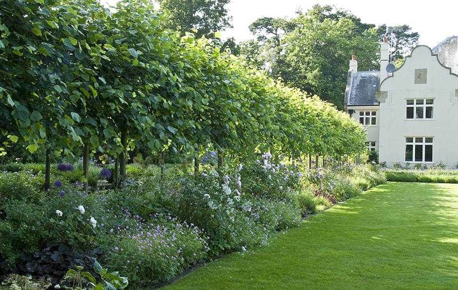 Acres Wild Edwardian Elegance Planting