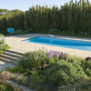 Acres Wild Guernsey Garden Pool