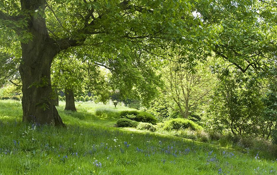 Acres Wild Mill Waters, Still Waters Meadow
