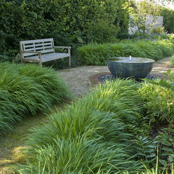Acres Wild Artfully Accessible Grasses