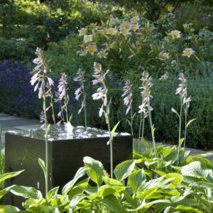 Acres Wild Artfully Accessible Water Feature