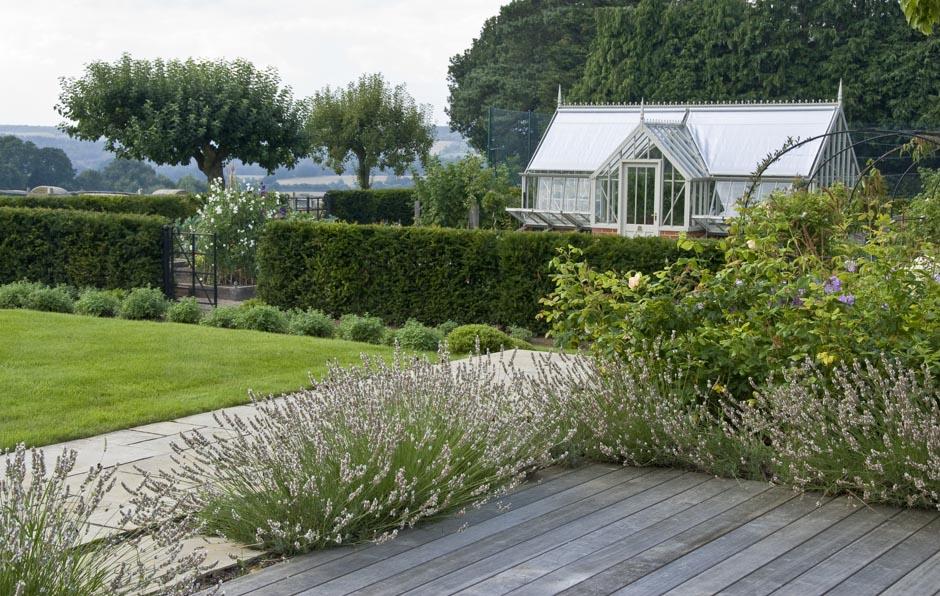 Acres Wild Surrey Serene Lavender Alba