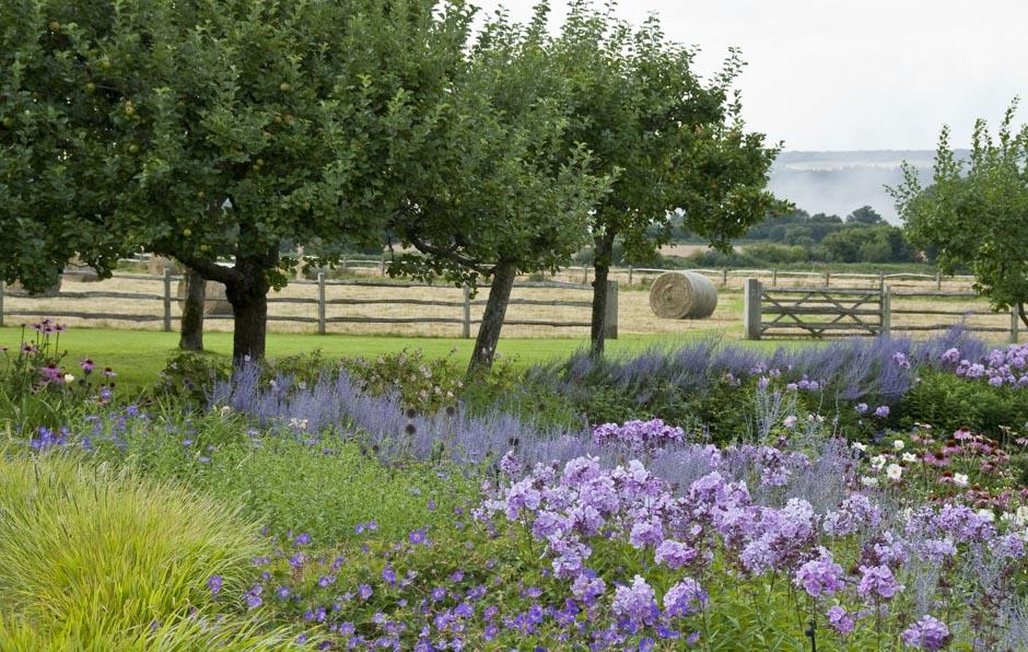 Acres Wild Surrey Serene Perennials
