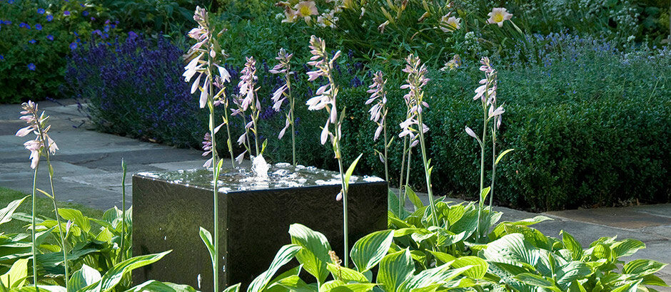 Acres Wild Water Feature Home