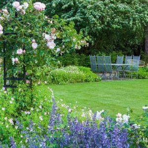 Acres Wild Edwardian Elegance Lawn