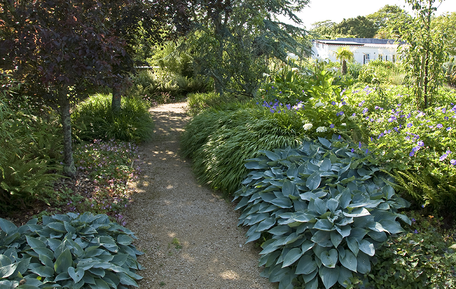 Acres Wild Peach House Beach House Hosta