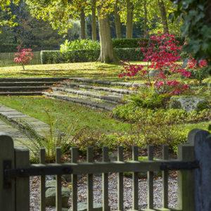 Gate leading to autumnal woodland garden, Acer palmatum 'Osakazukií