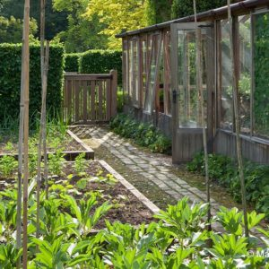 Acres Wild Vegetable Patch