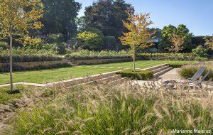 Acres Wild Stylishly Surrey Grasses
