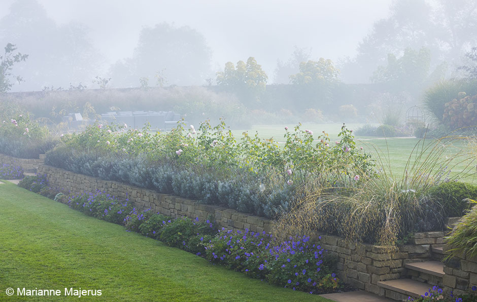 Acres Wild Stylishly Surrey Misty Morning