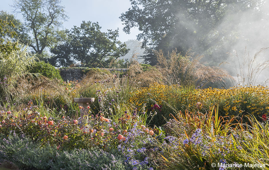 Acres Wild Stylishly Surrey Perennial Planting