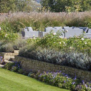 Acres Wild Stylishly Surrey Planting on Wall