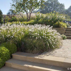 Acres Wild Stylishly Surrey Planting to Steps