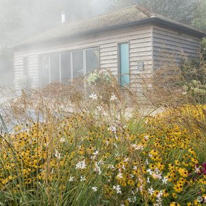 Acres Wild Stylishly Surrey Pool House