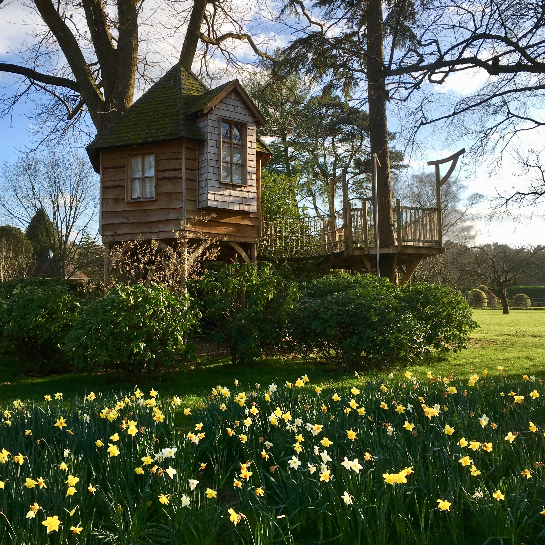 Acres Wild Surrey Serene Tree House
