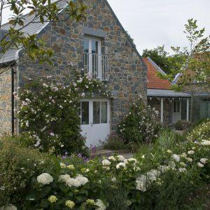Acres Wild Guernsey Garden Hydrangeas