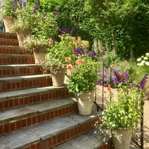 Acres Wild Steeply Sloping Container Planting