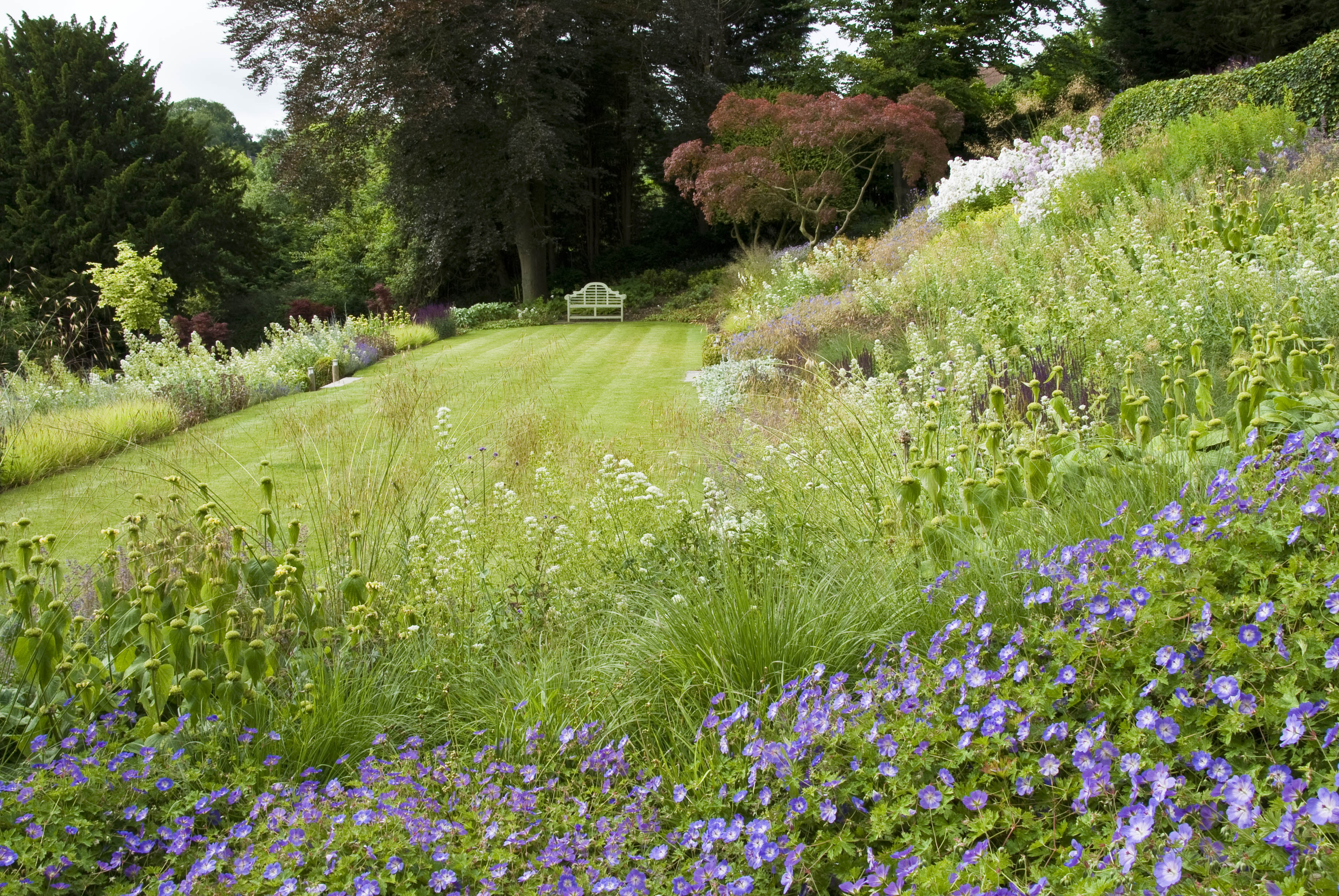 Acres Wild Steeply Sloping Lawn Area