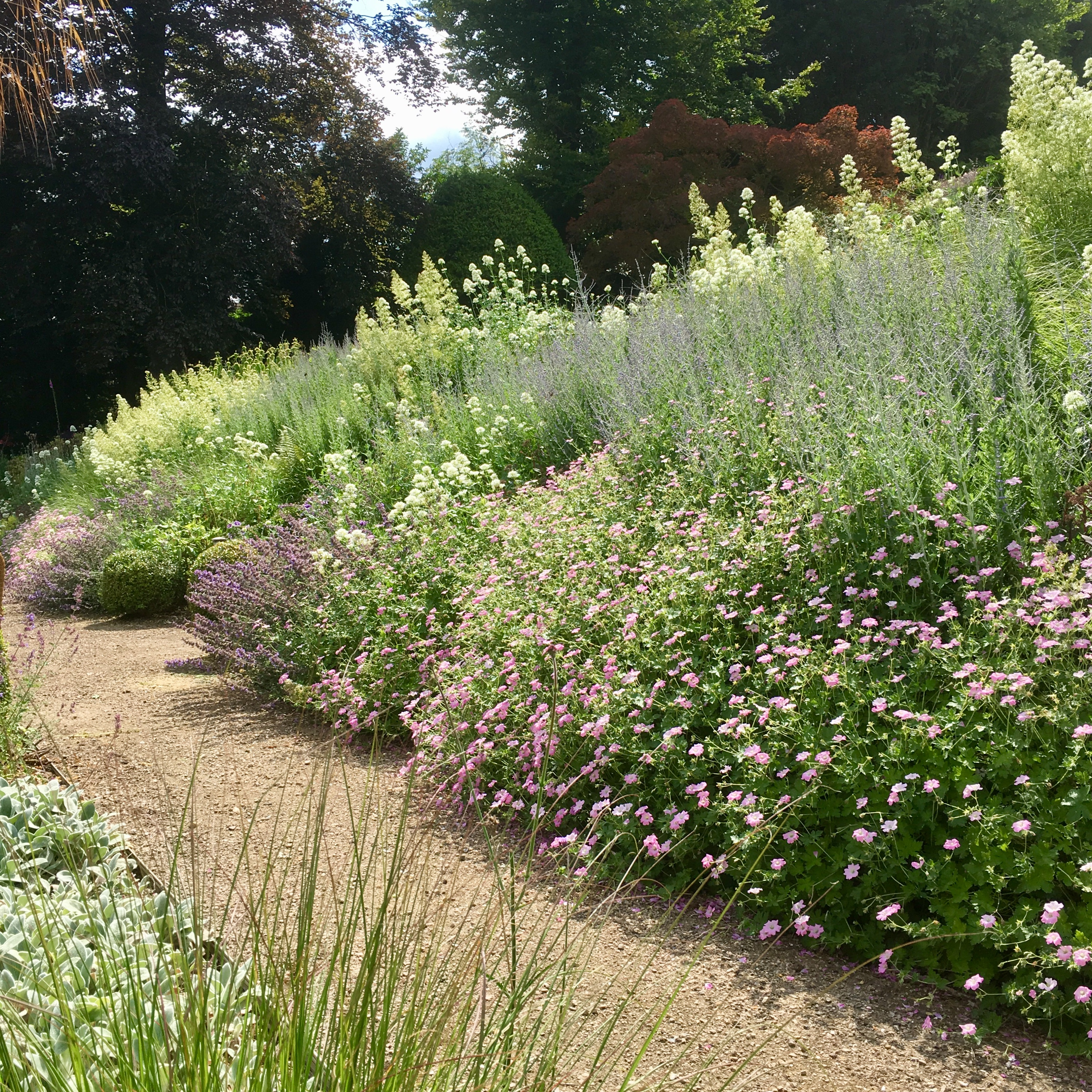 Acres Wild Steeply Sloping Perennial Planting