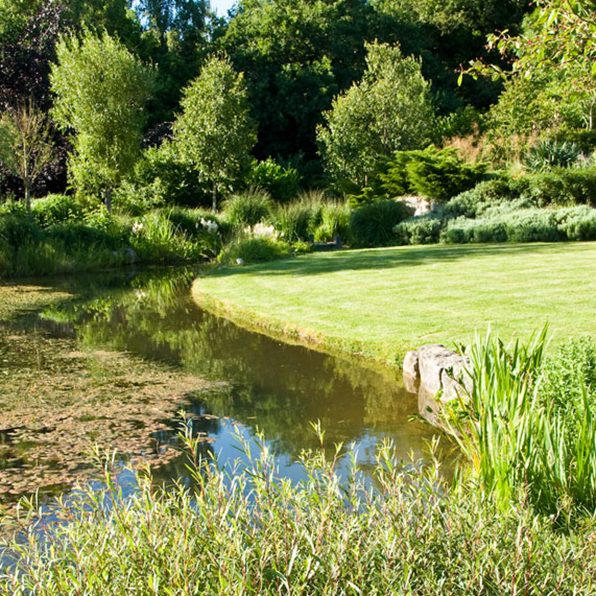 Acres Wild Ways with Water Edge