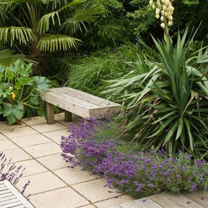 Acres Wild Form and Foliage Decking Steps with Planting