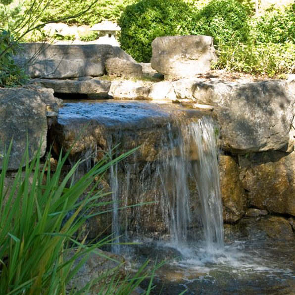 Acres Wild Ways with Water Fall
