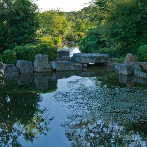 Acres Wild Ways with Water Pond
