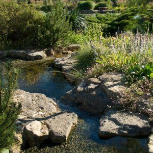 Acres Wild Ways with Water Rockery Planting