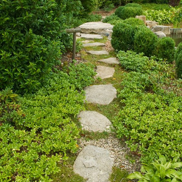 Acres Wild Ways with Water Stone Path