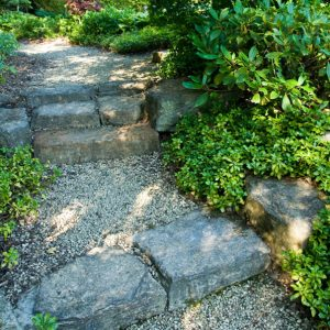 Acres Wild Ways with Water Stone Steps