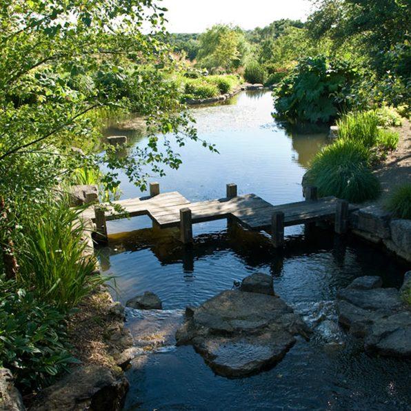 Acres Wild Ways with Water Walkway